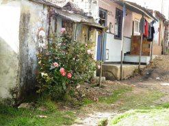 south Bogota