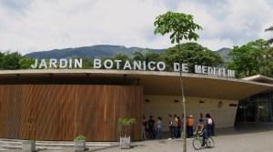 Jardin botanico 038