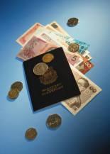 passport w money